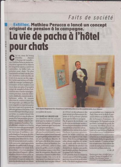 article-la-depeche-du-midi-22-novembre-2009-1.jpeg